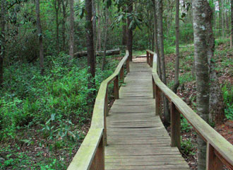 map_15fern_boardwalk
